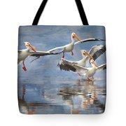 Four Pelican Landing Watercolor Effect Tote Bag