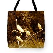 Four Resting Egrets Tote Bag