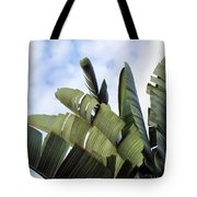 Four Seasons 7 Tote Bag
