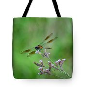 Four-spotted Pennant Tote Bag