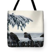 Four Turtle Doves Tote Bag