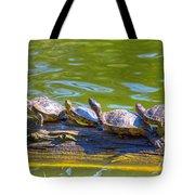 Four Turtles Tote Bag