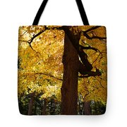 Four Yellow Trees  Tote Bag