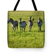 Four Zebras Tote Bag