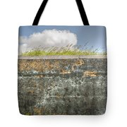 Fourt Moultrie Battery Jasper Wall Tote Bag