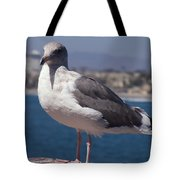 Waterfowl Model Tote Bag