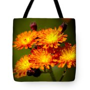 Fox-and-cubs Tote Bag