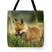 Fox Baby Tote Bag