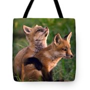 Fox Cub Buddies Tote Bag by William Jobes