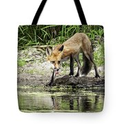 Fox Drink Tote Bag
