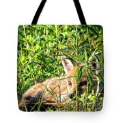 Red Fox Pup Hiding Tote Bag