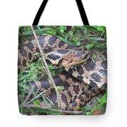 Fox Snake Tote Bag