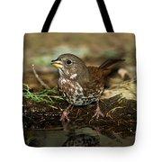 Fox Sparrow Drinking Tote Bag