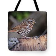 Fox Sparrow Pictures 16 Tote Bag