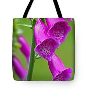 Foxglove Digitalis Purpurea Tote Bag