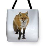 Foxy.. Tote Bag