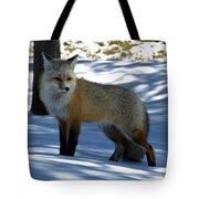 Foxy Shadows Tote Bag