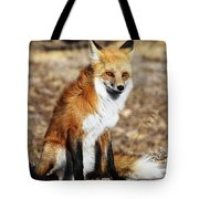 Foxy Tote Bag by Shane Bechler