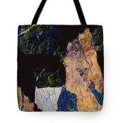 Fracture Section Xiv Tote Bag