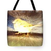 Like A Bird Or A Fragile Pedestrian Tote Bag