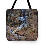 Fragility Of Ice Tote Bag