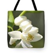 Fragrant Orange Blossoms Tote Bag