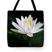 Fragrant Water-lily Tote Bag