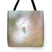 Frame Of Grasses Tote Bag