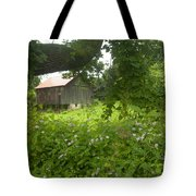 Framed In Green Tote Bag by Paul W Faust -  Impressions of Light
