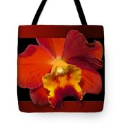 Framed Red Orchid  Tote Bag