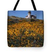 Framed With Gold Tote Bag