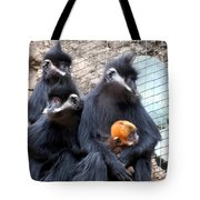 Francois's Langur Family Tote Bag