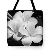 Frangipani In Black And White Tote Bag