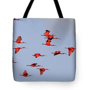 Frankly Scarlet Tote Bag by Tony Beck