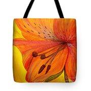 Freckles On Orange Tote Bag