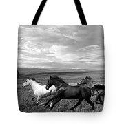 Free Range Running Horses Tote Bag