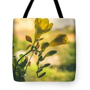 Freesia Tote Bag by Marco Oliveira