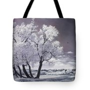 Freeze Tote Bag