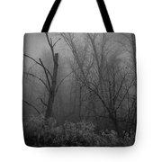 Freezing Rogue Valley Fog At Night Tote Bag