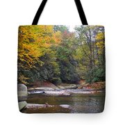 French Broad River In Fall Tote Bag