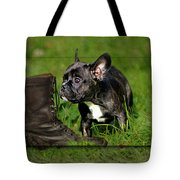 French Bulldogs Tote Bag by Heike Hultsch