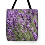 French Lavender Tote Bag
