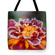 French Marigold Named Durango Red Outlined With Frost Tote Bag