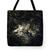 Frequencies Of Nature Tote Bag