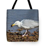 Fresh Crab For Lunch Tote Bag