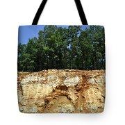 Fresh Cut Mountain Tote Bag