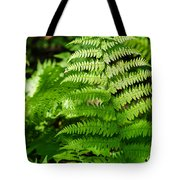 Fresh Fern - Featured 2 Tote Bag
