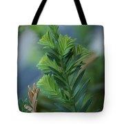 Fresh Growth Redwood Tote Bag