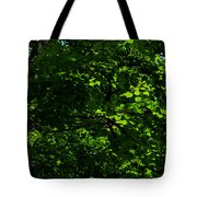 Fresh Linden Tree Foliage - Featured 2 Tote Bag
