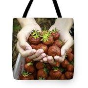 Fresh Picked Strawberries Tote Bag